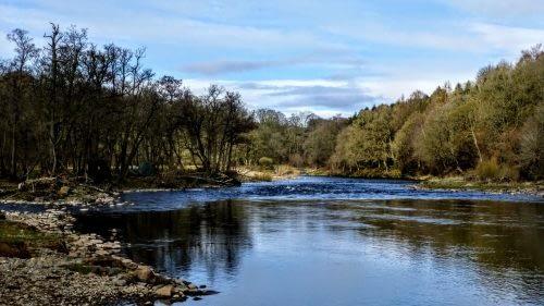 Wide slow River Eden outside Armathwaite
