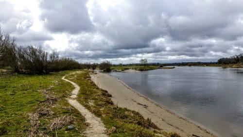 Sandy path beside the Eden, Rockcliffe