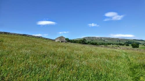 Hay meadows on approach to Askrigg
