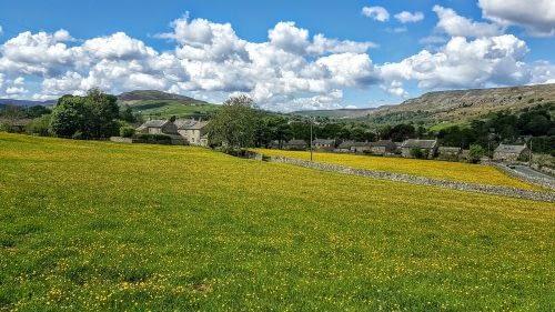 Hay meadows in full bloom outside Grinton