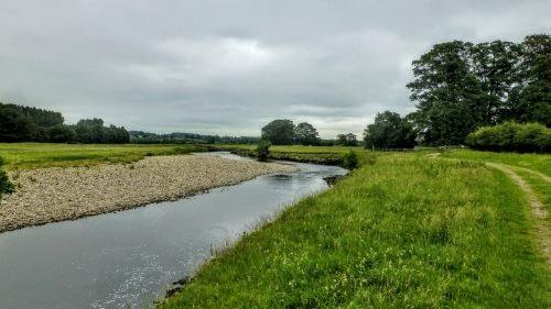 River Ure outside Jervaulx