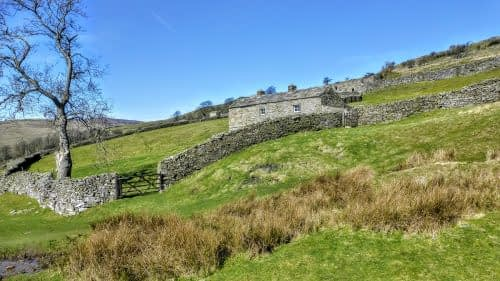 Field barn and walls, Swaledale