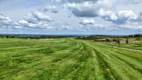 Walking across the gallops to Middleham